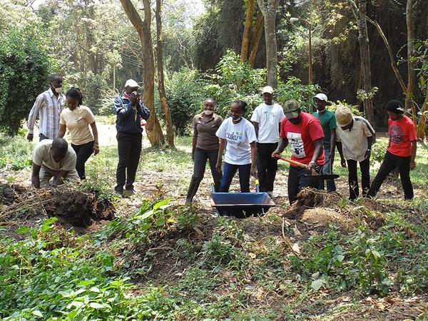 Gathering manure Photo by cngarachu