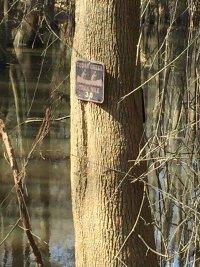 Site-1-Cedar-Creek-Canoe-Trail