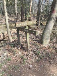 Site-8-River-Trailhead