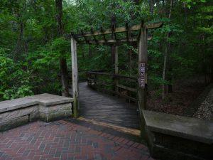 Start of Boardwalk Loop Trail