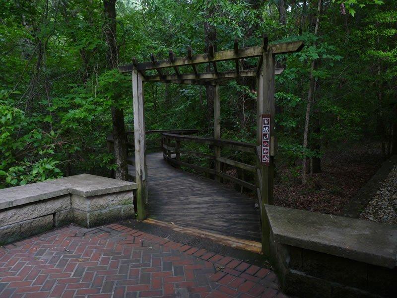 Boardwalk Loop Trail Guide – Friends of Congaree Swamp