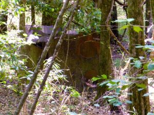 Old Still Site