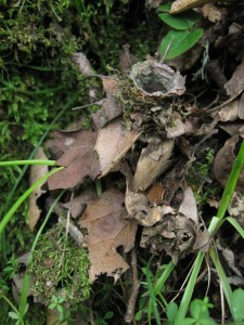 Camouflaged turret