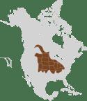 Image result for prairie vole range