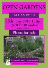 Alhampton_Open_Gardens_2017_in_aid_of_Haddon_Wood.jpg