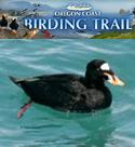 oregon coast birding trails