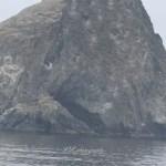 auralee-Norris-Approaching-Fog