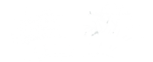 Friends of Split Oak Forest