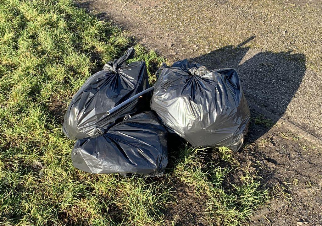 Borrow Wood Litter Pick