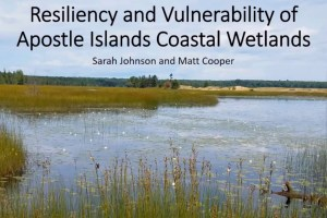 Resiliency Wetlands