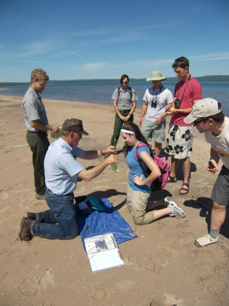 Jennie with Wisconsin DNR biologist Fred Strand and co-workers helping to band piping plover chicks