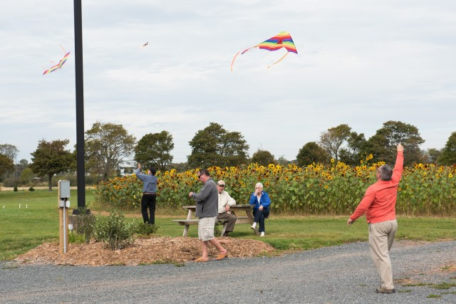 Kites_053