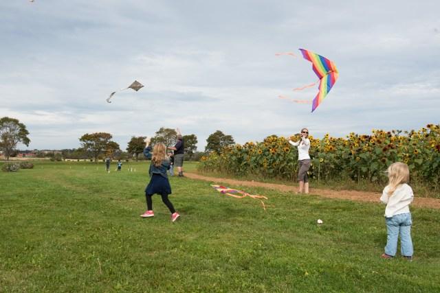 Kites_071