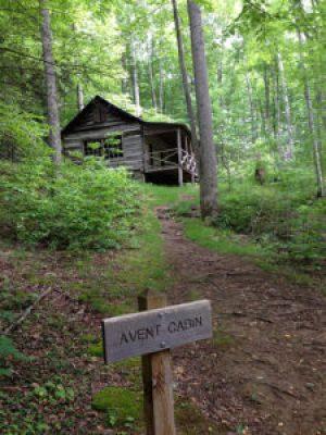 Avent Cabin - photo by Julie Dodd