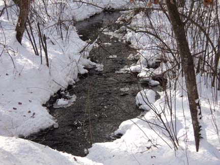 A creek off Westboro Rd