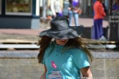 Fries_straat_Festival_2015-3727