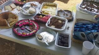 picnic i 6.11.17