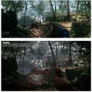 battlefield-1-pc-parche-downgrade-frikigamers-com