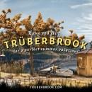 juego-truberbrook-ha-logrado-financiarse-kickstarter-frikigamers.com
