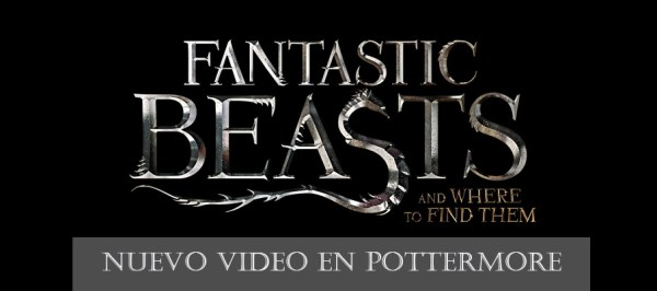FantasticBeasts HEADER