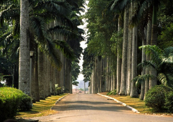 Aburi Botanical Gardens: : Top 5 Tourist Sites in the Eastern Region of Ghana