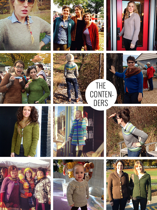 Rhinebeck Sweater contest 2013 contenders