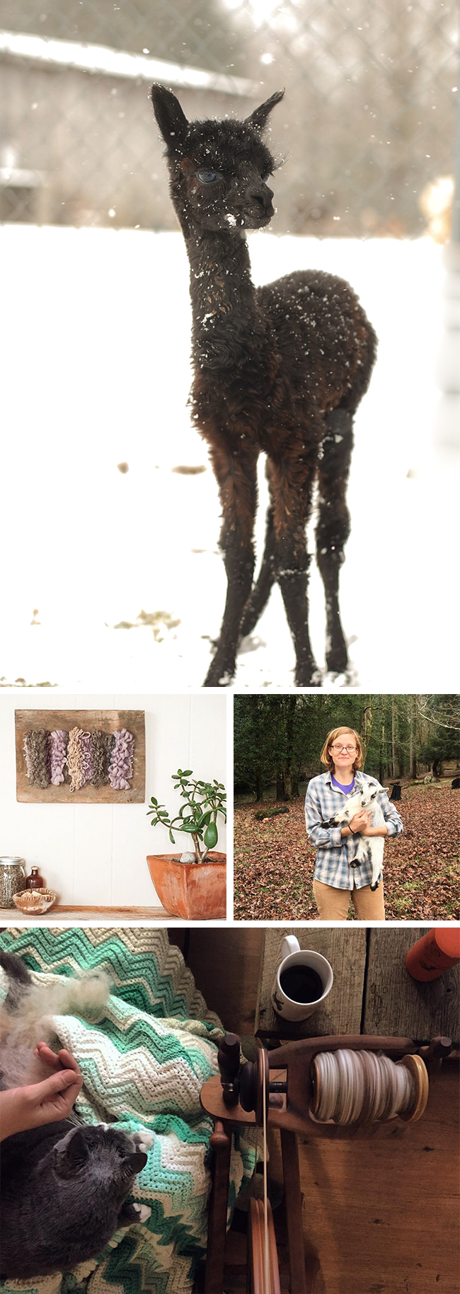 Maker Crush: Kacie Lynn of Fiber Farm