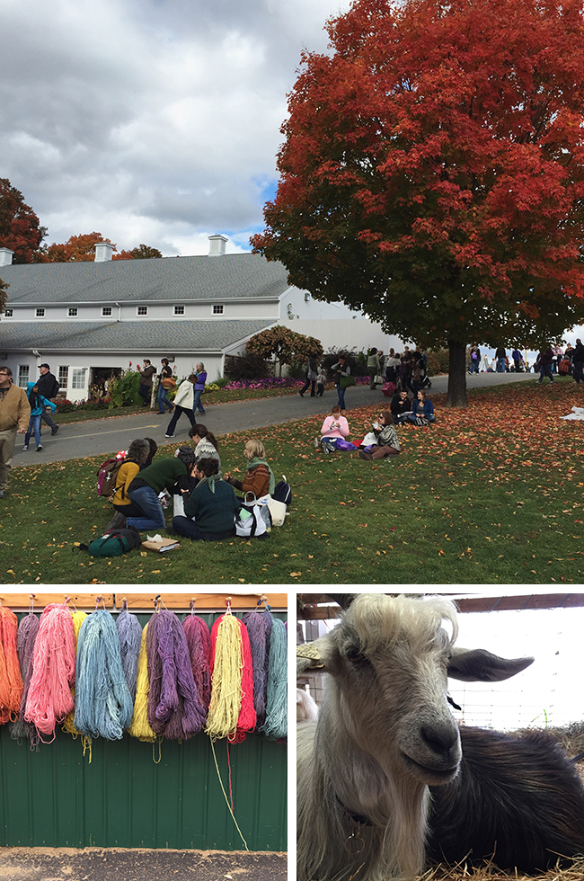 What I Know About: Rhinebeck (with Kay Gardiner)