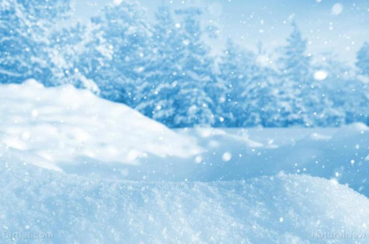 Triboelectric nanogenerator allows you to generate electricity from snowfall