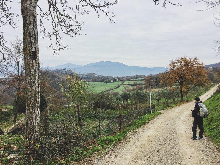 Via degli Dei: mini guida per fare il cammino in 4 o 5 tappe