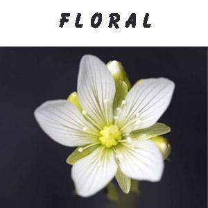 Floralduft