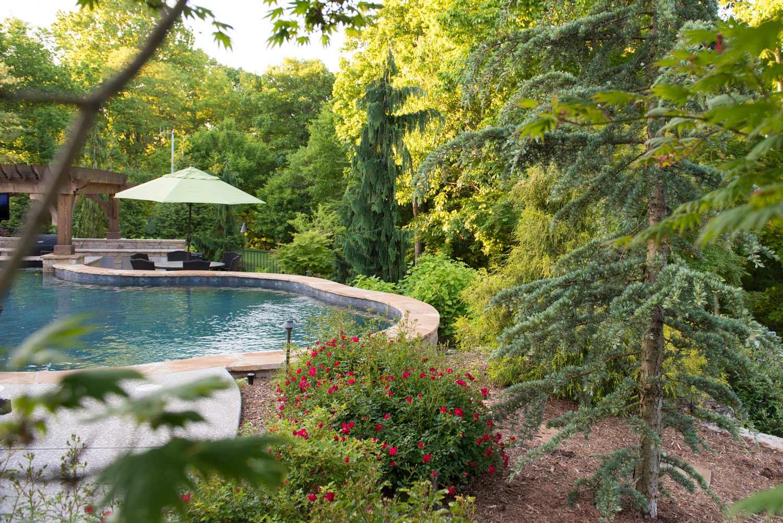 Backyard_Pool_Outdoor_Kitchen_Landscape_Frisella_Nursery