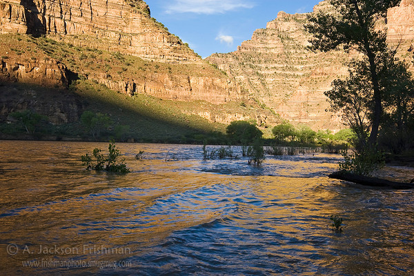 Morning reflections on the Green River, Desolation Canyon, Utah, June 2010.