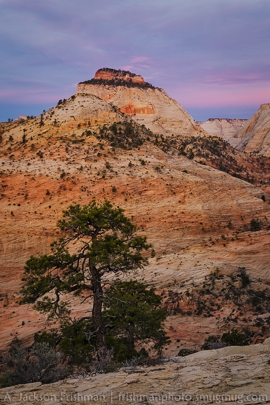 Dawn clouds above the East Temple, Zion National Park, Utah