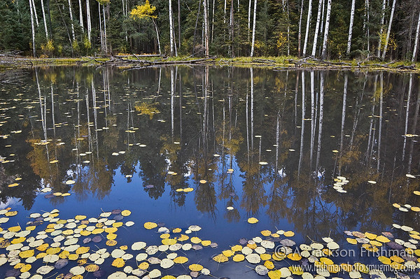 Hillsboro Lake in New Mexico's Aldo Leopold Wilderness
