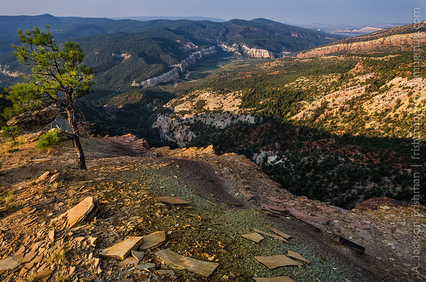 Sunrise above Rio Gallina, Chama River Canyon Wilderness, New Mexico