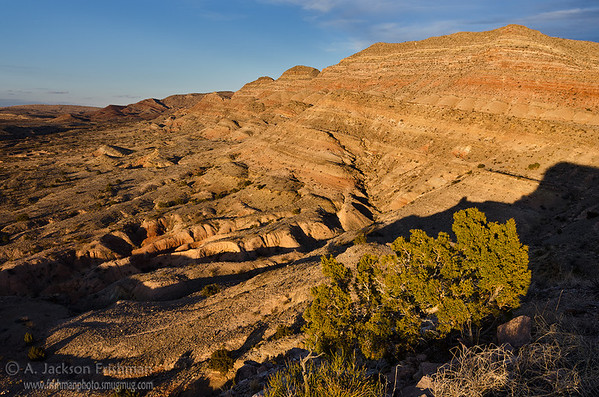 Golden sunset on Loma de las Cañas in the Quebradas badlands, eastern Socorro County, New Mexico