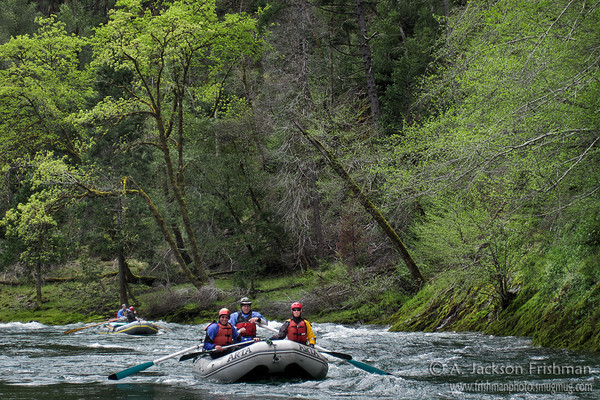 Rafts and spring leaves in Oregon's Kalmiopsis Wilderness