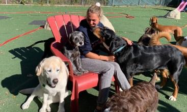 Dog Handler Emily shares her seat