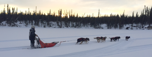 Mushing-on-pond
