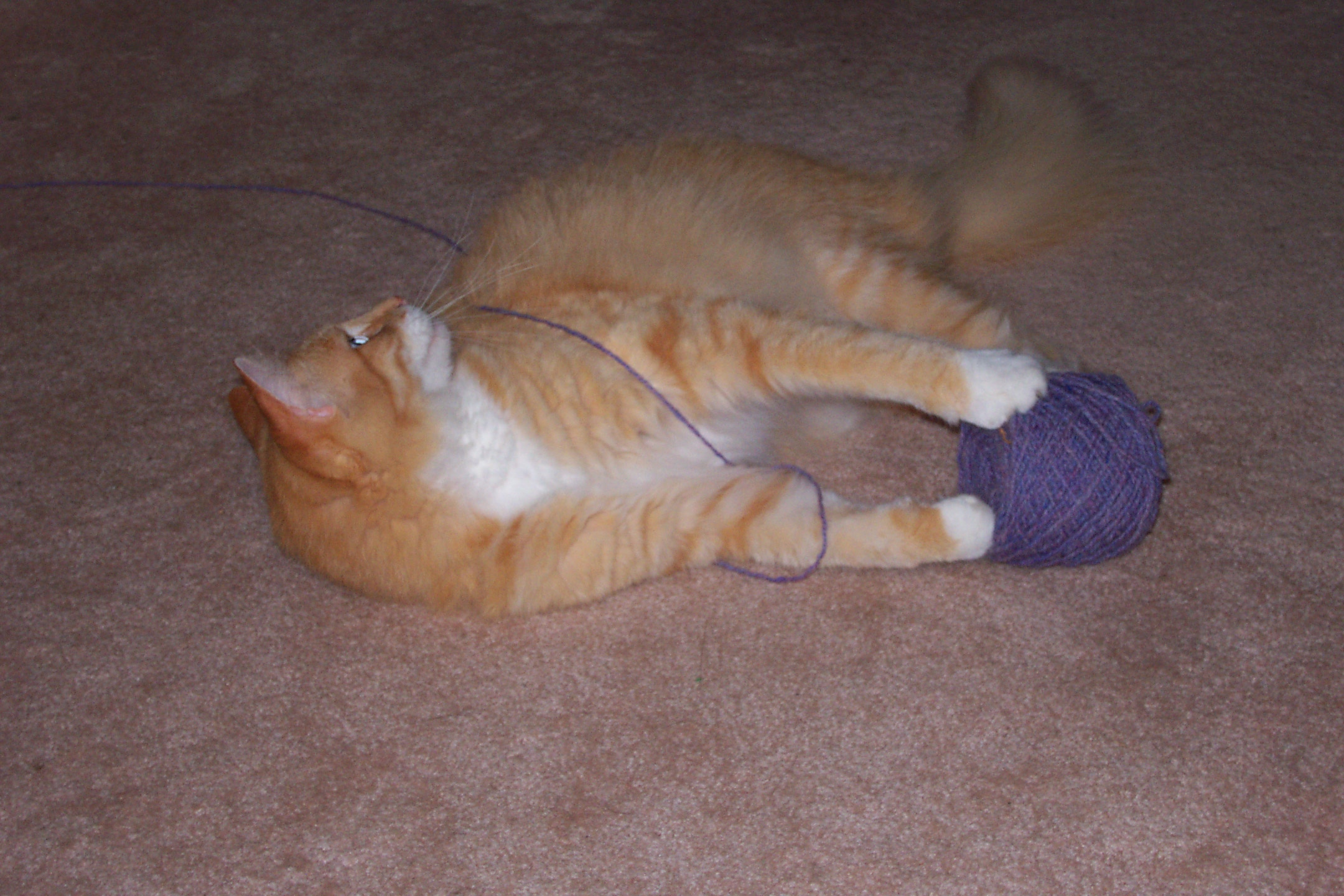 Learning to Knit