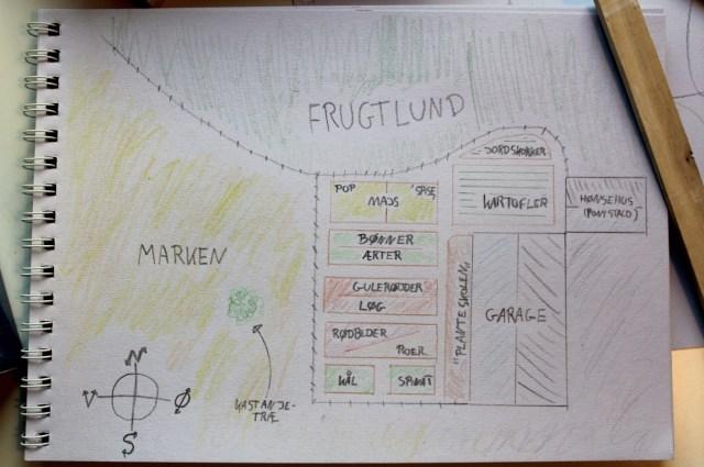 plantegning-koekkenhave, køkkenhave, koekkenhave, majs, bladbeder, squash, græskar, graeskar, gulerødder, guleroedder, løg, loeg, rødbeder, roedbeder, bønner, boenner, ærter, aerter