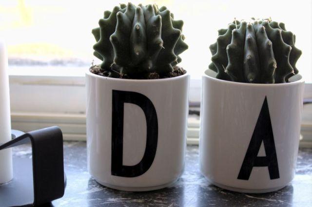 kaktus, design-letters