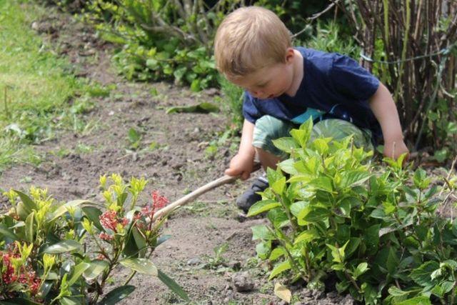 mors-lille-hjaelper, haven
