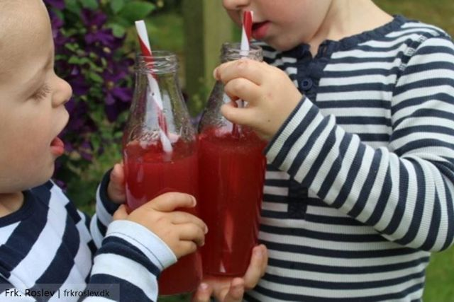 hindbaer-nektarin-lemonade, lemonade, skaal