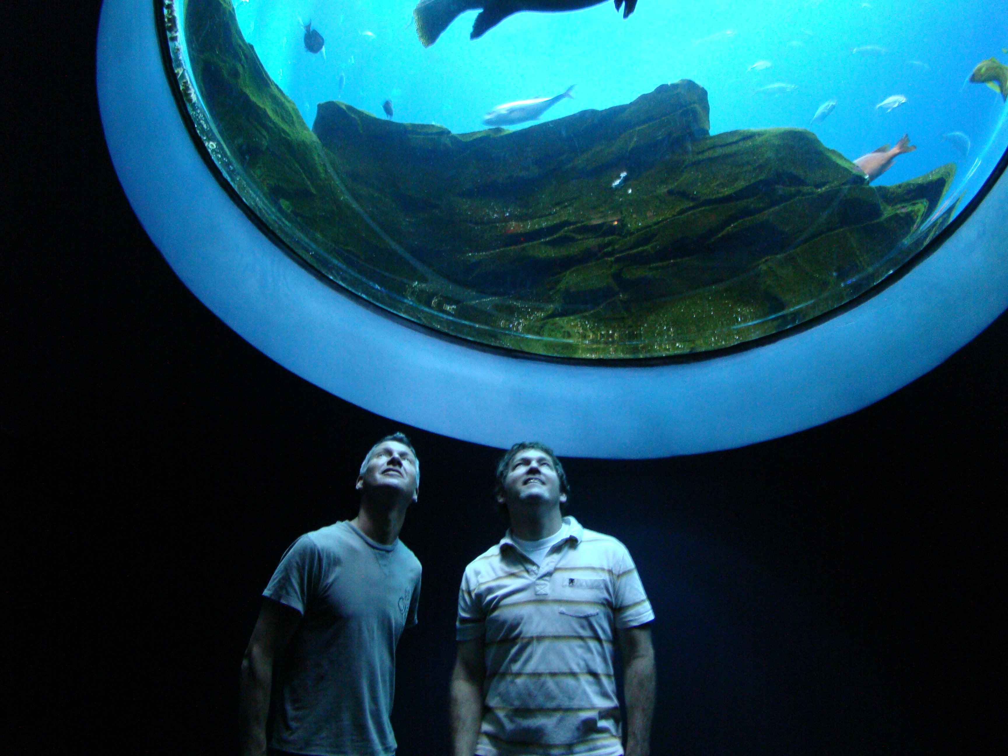 Ron Gagliardo and I looking into the worlds largest aquarium! probably..