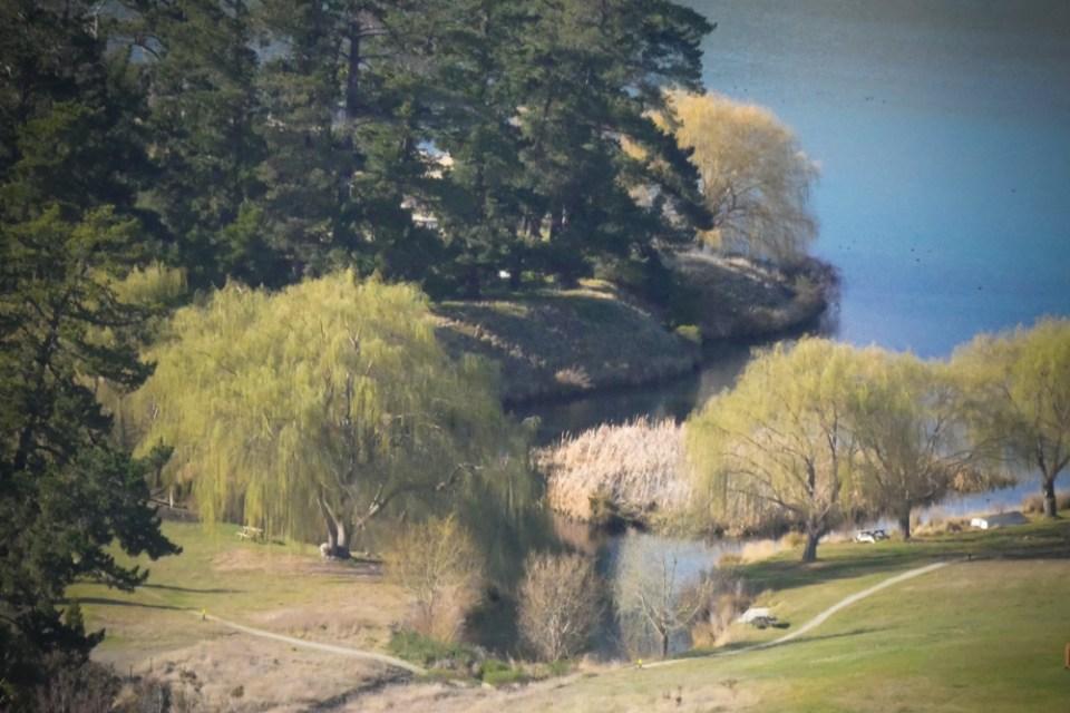 lake dunstan Pisa-1160934