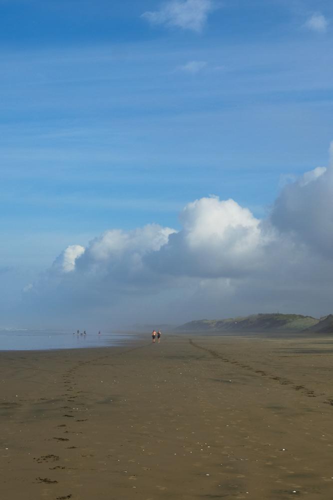 muriwai beach-1200942