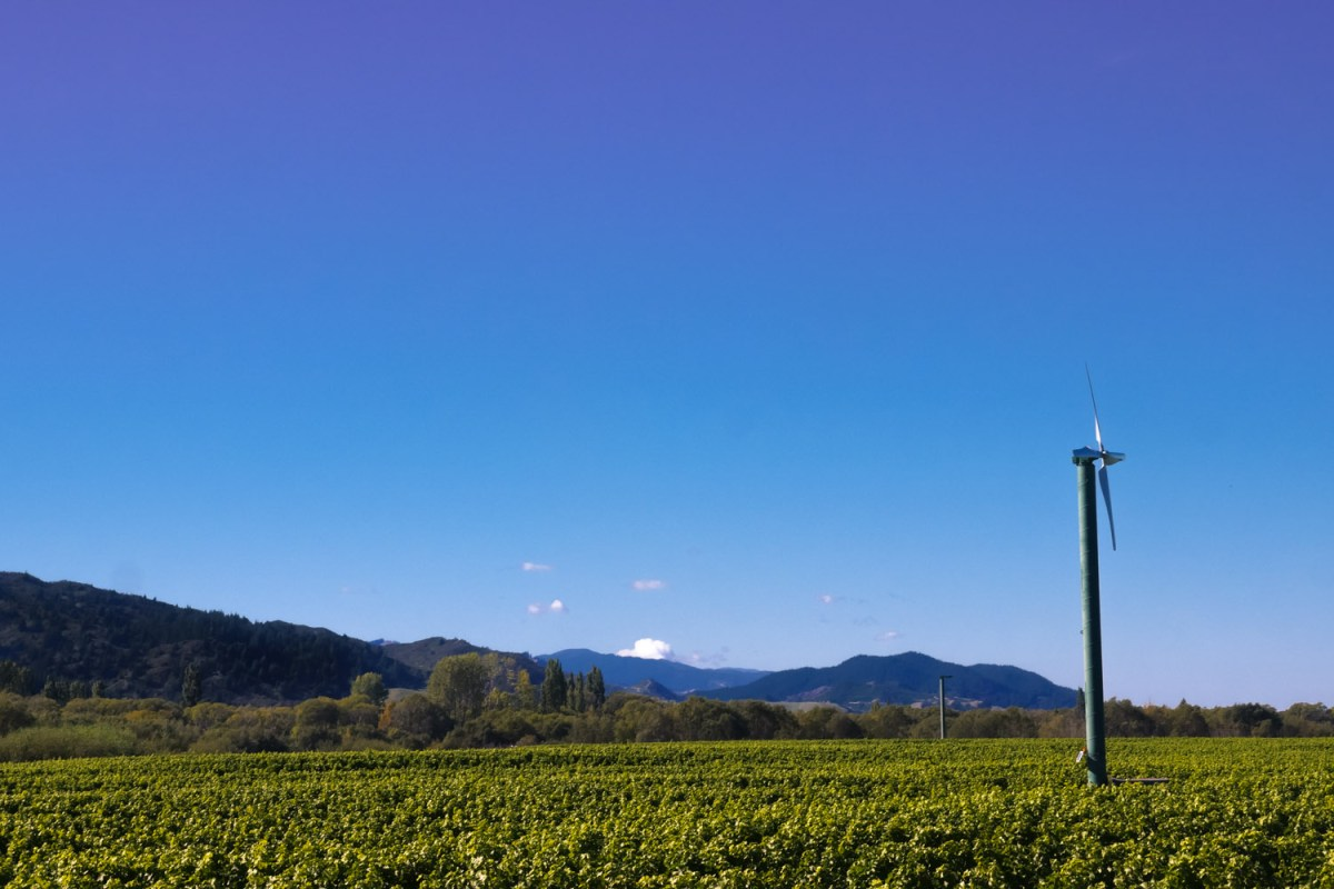 blue skies at Loddon Lane
