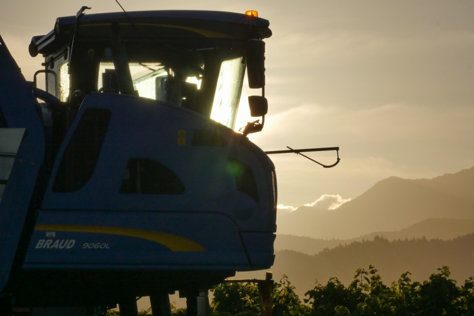 sparkling sunset with harvester